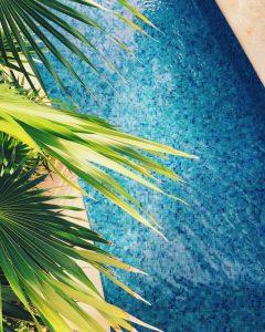 posizione piscina in giardino